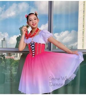 Ballet Costume - BC107