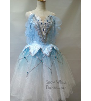 SW Ballet Costume - BC110