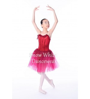 Kids Dance Costume - SWK012